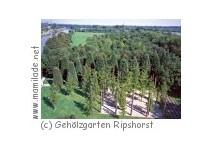 Gehölzgarten Ripshorst