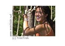 TreeTrek