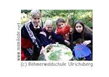 Böhmerwaldschule in Ulrichsberg