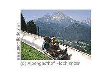Sommerrodelbahn Hochlenzer in Berchtesgaden