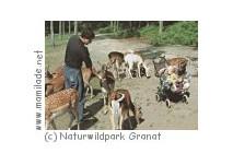 Naturwildpark Granat