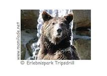 Wildparadies Erlebnispark Tripsdrill