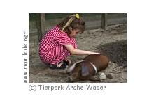 Tierpark Arche Warder