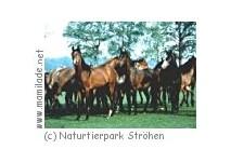 Naturtierpark Ströhen