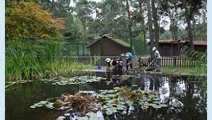 Haus Natur und Umwelt Berlin - Teichanlage, © Antje Griehl
