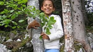 Feengrotten Walderlebnispfad