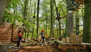 AbenteuerPark Potsdam - Kletterwald, Kinderevents, Schulklassenprogramme und Geburtstage für alle Kids