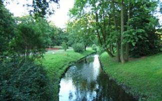 Bürgerpark Pankow, © Antje Griehl