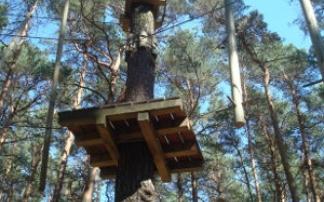 Tree Runner Klettergurt : Der kletterwald wuhlheide am fez in berlin mamilade ausflugsziele