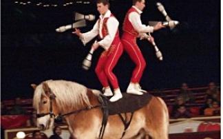 Die Original Berliner Jockeyreiter, © Menschen-Tiere-Sensationen