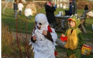 Kinder- und Jugendfarm Biberbau in Biebrich