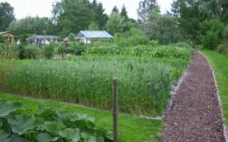 Biogarten Prieros
