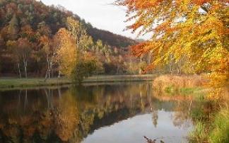 Erlebnispfad vom Biosphärenhaus Pfälzer Wald