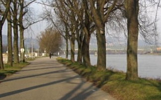 Wanderung auf dem Mainuferweg Frankfurt