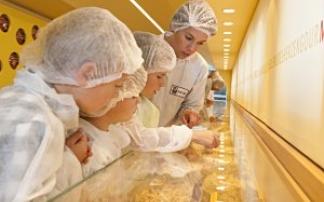 Gläserne Produktion bei Alb-Gold in Trochtelfingen