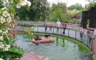 Kindergeburtstag im Zoo Halle