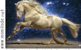 Apassionata - Die Galanacht der Pferde in Linz