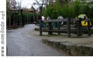 Sommer im Opel-Zoo in Kronberg