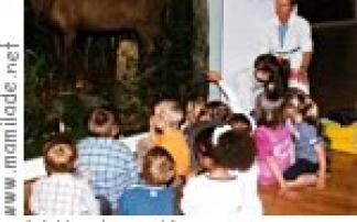 """""""Frau Hoys und das Weihnachtsfest"""" Vonderau Museum Fulda"""