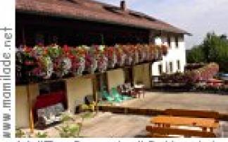 """Pottenstein """"Zur Burgruine"""" Gasthof Pension"""