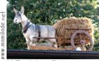 Zum Lahmen Esel in Frankfurt