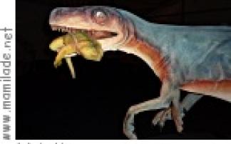 Naturmuseum Senckenberg: GigaSaurier