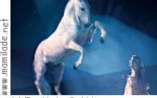APASSIONATA - Im Licht der Sterne