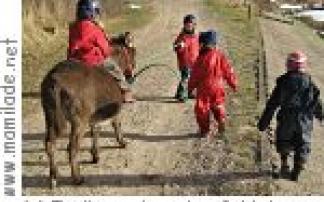 Eselkoppel an der Schlei Kindergeburtstag