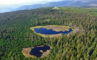 Luftbild Kaltenbronn, Blick über die Moorlandschaft mit Seen und Aussichtisturm