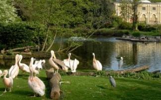 Faszinierende Tierwelten im Zoo Köln (c) Zoo Köln