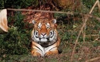 Entdeckungen im Zoo Landau