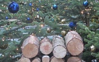 Märchenweihnachtsmarkt Luckenwalde