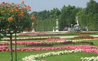 Stadtpark Mainz