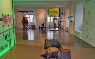 Kindergeburtstag im Eifelmuseum in Mayen