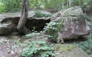 Felsenmeer in Murrhardt (c) alex grom