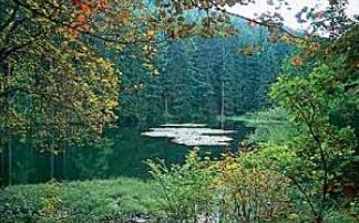 Unterwegs im Naturpark Rothaargebirge