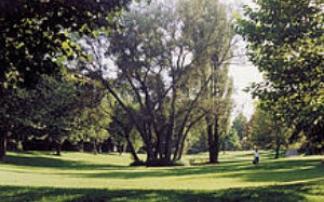 Wagwiesental