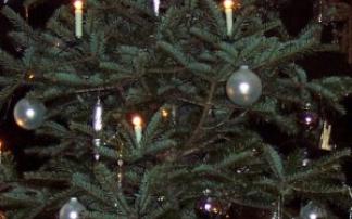 """Musical """"Ritter Rost feiert Weihnachten"""" in Stuttgart (c) alex grom"""