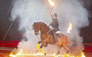 The Royal Horse Gala: Emotions