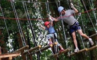 CLIMB UP! - Kletterwald® in Strausberg