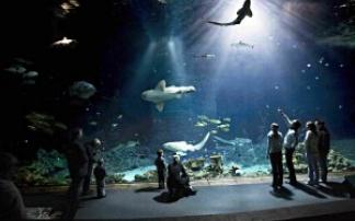Tropen-Aquarium Hagenbeck in Hamburg