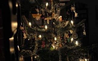 Weihnachts-Waldmarkt