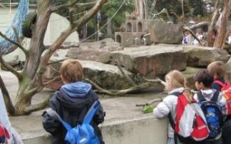 kindergeburtstag im tiergarten heidelberg feiern mamilade ausflugsziele. Black Bedroom Furniture Sets. Home Design Ideas