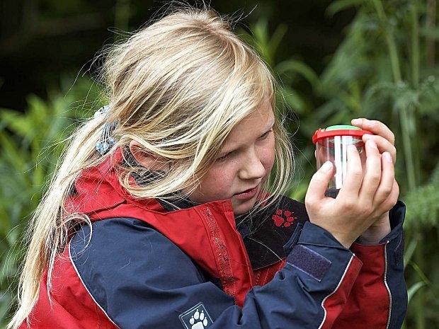 Erlebniswald Trappenkamp - Hanna Polte untersucht einen Käfer mit der Becherlupe