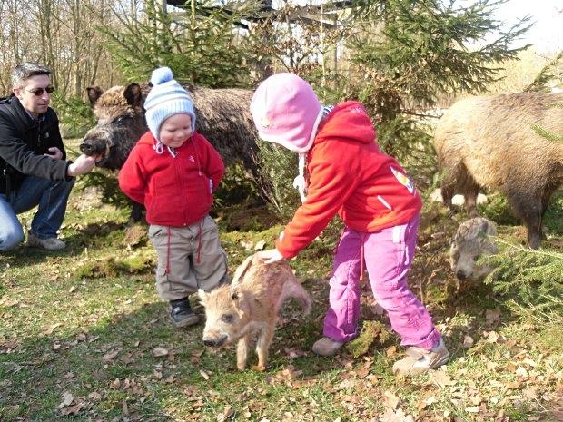 Erlebniswald Trappenkamp - Kinder mit Frischlingen