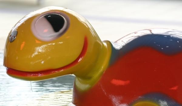 Schildkröte im OTeBad Bremen