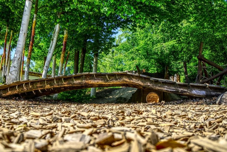 Symbolfoto: Wald-Erlebnispfad Eversberg