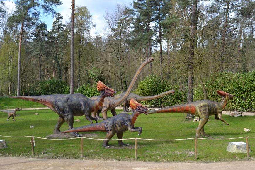 Dino Zoo Metelen