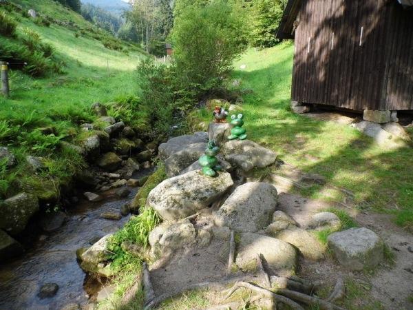 Glücksweg in Bermersbach