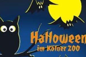 (c) Kölner Zoo